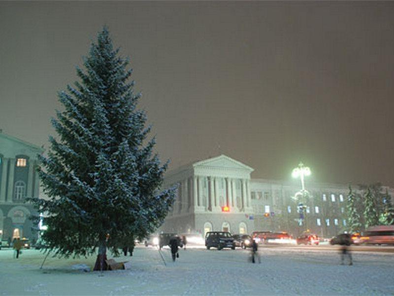 Ввоскресенье вКурске «зажгут» главную новогоднюю елку