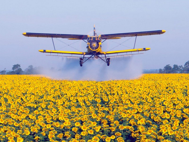 Курянина отравили химикатами вовремя авиационной обработки поля