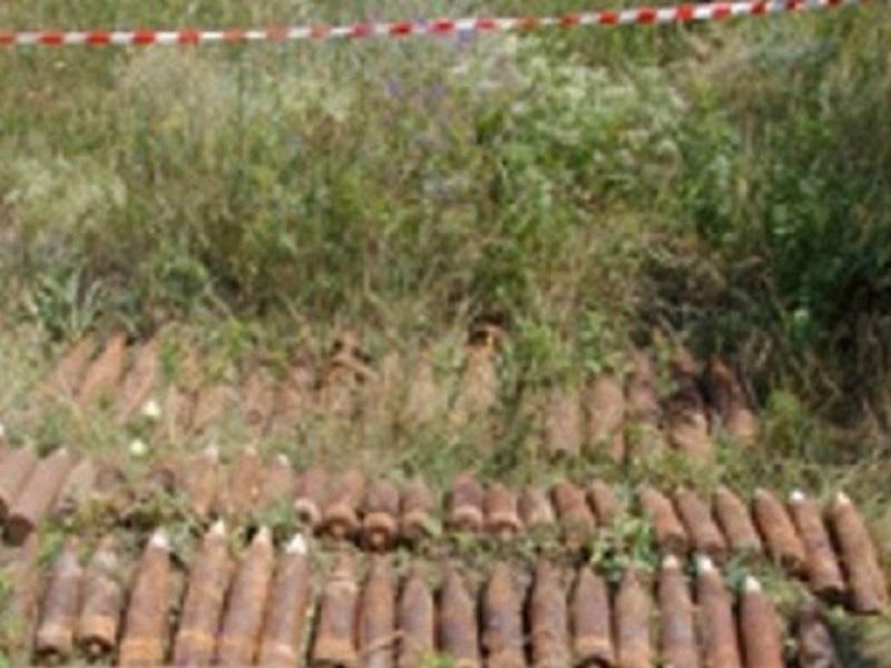 ВМантуровском районе местный гражданин отыскал минометную мину