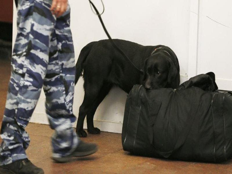 ВКурской области полицейские обезвредили подозрительный чемодан
