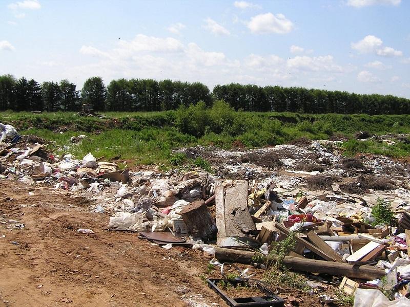 Минприроды иОНФ представят экологический рейтинг городов