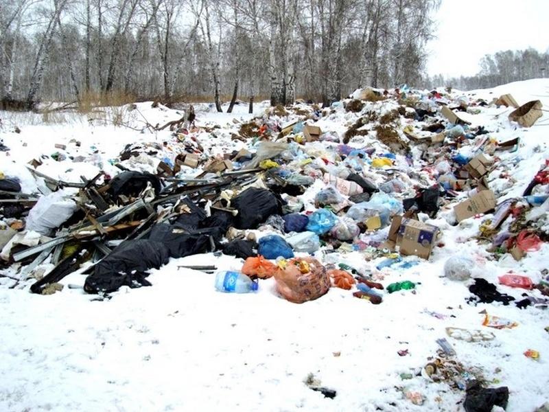 ВКурском районе потребованию прокуратуры убрали 5 свалок