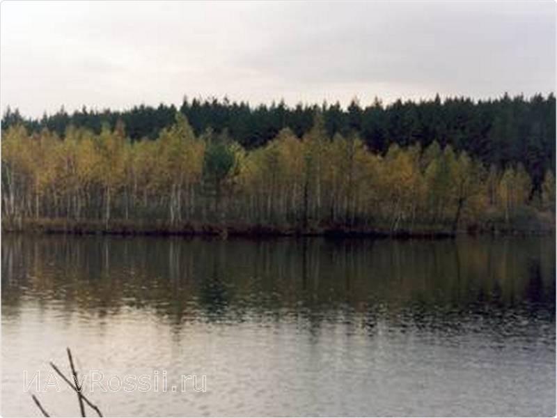Клюквенное озеро в суджанском районе фото